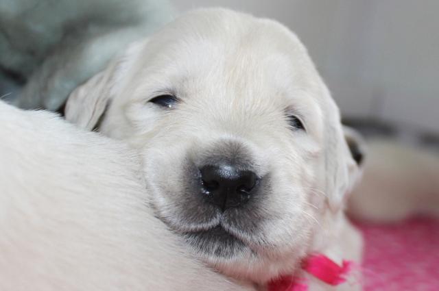 Miss cutie-pie!