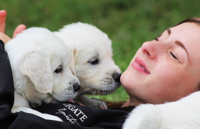 Nothing like puppy kisses